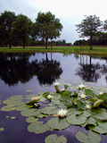 Étang de terrain de golf image libre de droits