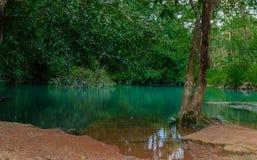 Étang de turquoise dans la forêt tropicale photographie stock libre de droits
