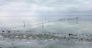 Étang de Vaccares - Saintes-Maries-de-la-Mer - Camargue - France photographie stock libre de droits