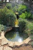 Étang en parc Ramat Hanadiv, jardins commémoratifs de Baron Edmond de Rothschild, Zichron Yaakov, Israël image libre de droits