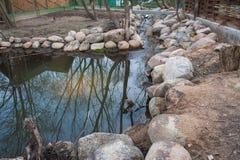 Étang en pierre, simple peu de lac sur le complot photo stock