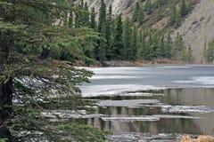 Étang en stationnement national de Denali images libres de droits