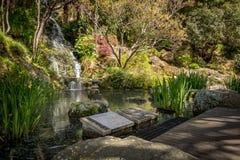Étang japonais de jardin, Wellington Botanical Gardens images stock