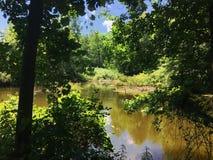 Étang local dans le Connecticut Image stock