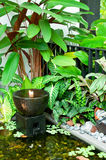 Étang résidentiel de patio Image libre de droits