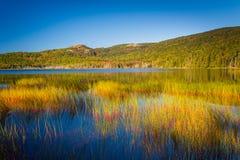 Étang supérieur de Hadlock en parc national d'Acadia, Maine Images libres de droits
