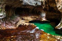 Étang vert dans la caverne Images libres de droits