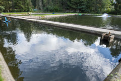 étangs d'élevage de poissons Photographie stock libre de droits