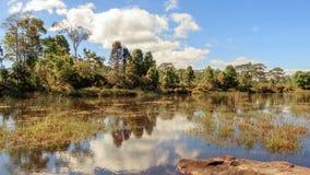 Étangs dans la forêt avec des nuages se reflétant dans l'eau photographie stock
