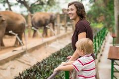 Étant dans le zoo images libres de droits