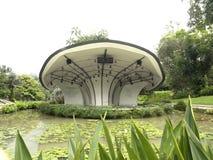 Étape aux jardins botaniques de Singapour Photo libre de droits