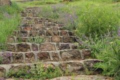 Étape en pierre sur l'herbe verte photographie stock libre de droits