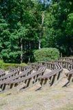 Étape naturelle en parc de ville Images libres de droits