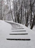 étapes couvertes de neige dans la forêt Photos stock