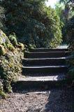 Étapes dans un jardin Photographie stock libre de droits