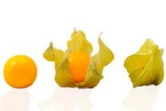 Étapes de Goldenberry Photo stock