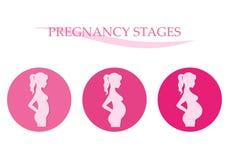 Étapes de grossesse Femme enceinte Photos libres de droits