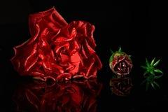 Étapes de la vie de rose de rouge Image libre de droits