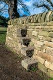 Étapes de pierres sèches Photos stock