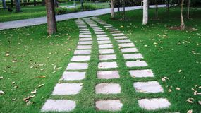 Étapes de vert de route de jardin photos stock