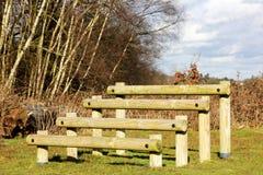 Étapes en bois de forme physique d'équilibre Image libre de droits