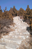 Étapes en pierre Photographie stock