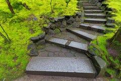 Étapes en pierre de granit le long de mousse verte Photographie stock libre de droits