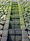 Étapes en pierre moussues menant pour arroser photographie stock