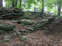 Étapes en pierre sous la garde en bois Photographie stock libre de droits