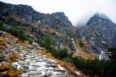Étapes gelées sur le chemin à Mt Rysy Photos stock