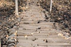 Étapes Inde de formations de roche de colonne de basalte image libre de droits