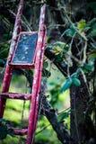 Étapes jetées de récolteuses de fruit Photos libres de droits