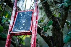 Étapes jetées de récolteuses de fruit Images libres de droits