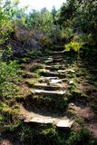 Étapes sur un chemin dans la région de Hogsback Photo stock