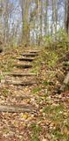 Étapes sur un sentier de randonnée photos libres de droits