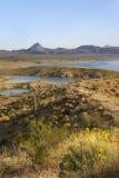 état de stationnement de lac d'alamo Arizona Photo stock