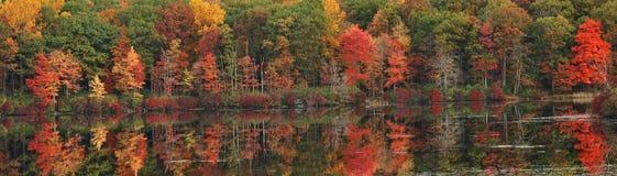 état neuf York de feuillage d'automne image libre de droits