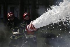 Éteignez-vous l'incendie de forêt Images stock