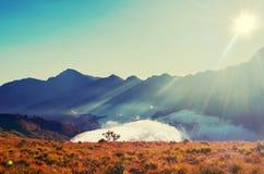 Étendue de prairie à la montagne au matin photo stock