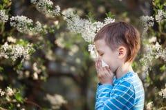 Éternuements de garçon en parc dans la perspective d'un arbre fleurissant parce qu'il est allergique photos stock