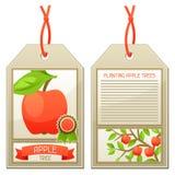 Étiquette de vente des pommiers de jeunes plantes Instructions pour planter l'arbre Photo stock