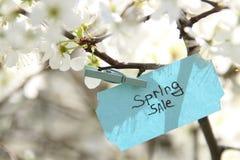 Étiquette de vente de ressort et fleurs blanches dans un jour ensoleillé de ressort Photographie stock libre de droits