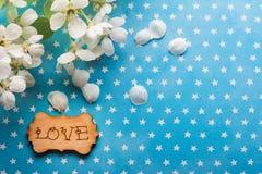 Étiquette en bois avec amour de mot sur le bleu Images stock