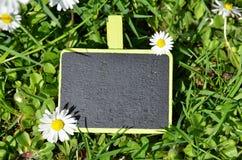 Étiquette sur l'herbe Photo stock