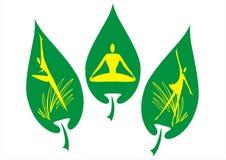 Étiquette verte Images stock