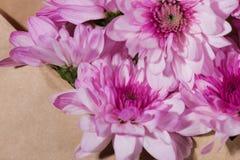 Étiquette vide de livre blanc avec l'enveloppe brune et fleurs roses sur l'OE Images stock