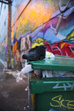 Étiquettes de rue de Vancouver Photo libre de droits