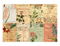 Étiquettes imprimables comportant le collage floral Photo stock