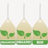 Étiquettes organiques Photo libre de droits