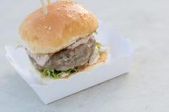 Étoffez le serverd de petit pain d'hamburger et de sauce et de sésame à mayonnaise sur la boîte de papier Image libre de droits